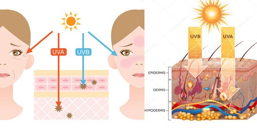 Hoe diep komt de UV-A en UV-B straling.