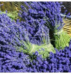 Lavendel Waxmelt