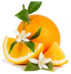 Sinaasappel Bloesem Waxmelt